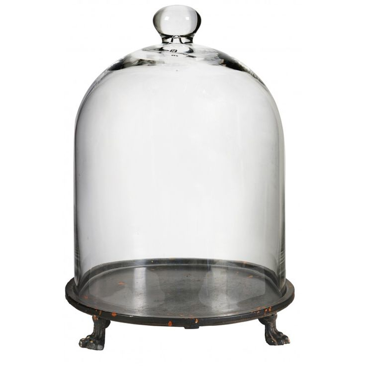 Glass Dome with Stand