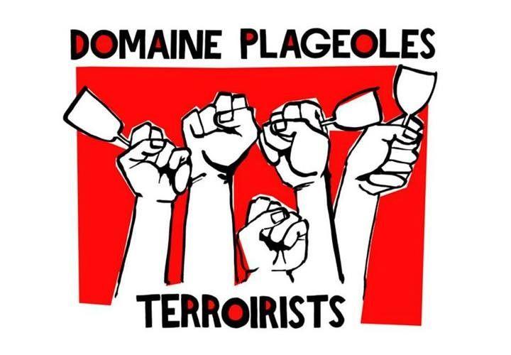 Domaine Plageoles - Gaillac - Des vignerons comme on les aime à Brin de Cocagne - chambre d'hôtes écologique de charme dans le Tarn près d'Albi - Brin de Cocagne