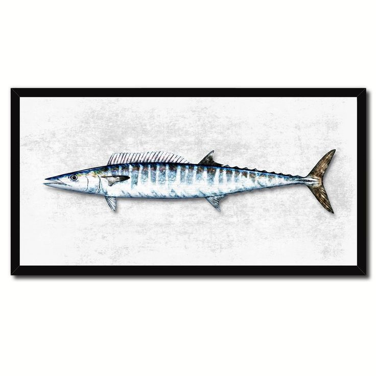 Wahoo Fish Art 14240 Custom Picture Frame Home Decor Nautical Beach  Fisherman Shabby Chic Gift Ideas White X
