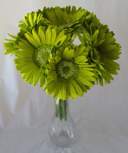 Google Image Result for http://weddingbouquetprices.com/wp-content/uploads/2012/06/c2b96_gerber_daisy_wedding_bouquet_51VfeT07mjL.jpg