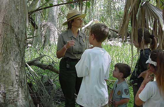 South Florida's National Parks (Big Cypress National Preserve, Biscayne National Park, and Everglades National Park).