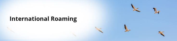 We provide International Roaming capabilities aka Direct DID, based on call forwarding using our dependable, inexpensive and cheap international call rates.