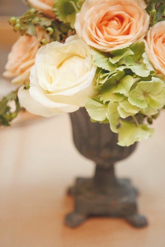 Plain Chocolate, Pistachio Green, Tangerine {Colour Collection} with Natural Calico {Natural Neutrals}