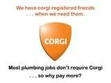 Corgi Plumbers London Gas Safety Advice From Your Gas Safe Registered Engineer.d… It has replaced CORGI registration. KEEP SAFE IN YOUR HOME Badly fitted and poorly serviced appliances can cause gas Central London Plumbers  … Retrieve Document http://plumbersinnorthlondon.org/corgi-plumbers-london.html