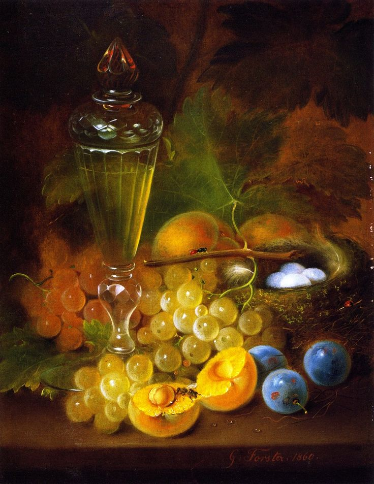 The Athenaeum - Still LIfe with Grapes and Nest (George Forster - ) 1860