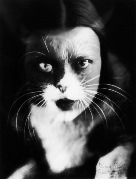 Kitty - double exposure by Man Ray. He was the earliest innovative photographer among the surrealists. He made photographic portraits of most of them. Also created surreal objects and paintings.