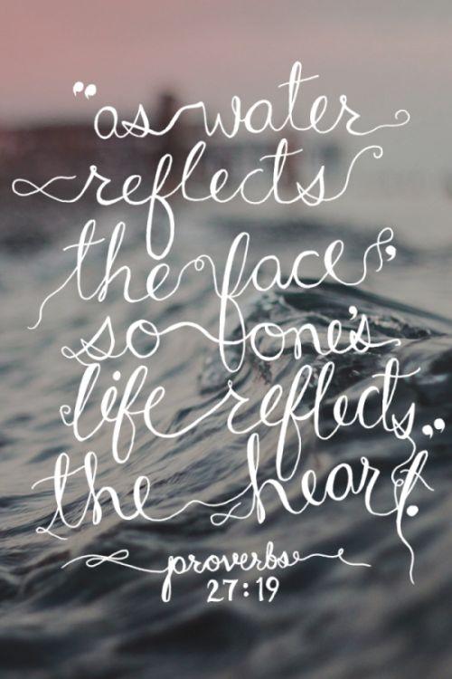 Proverbs 27:19<3