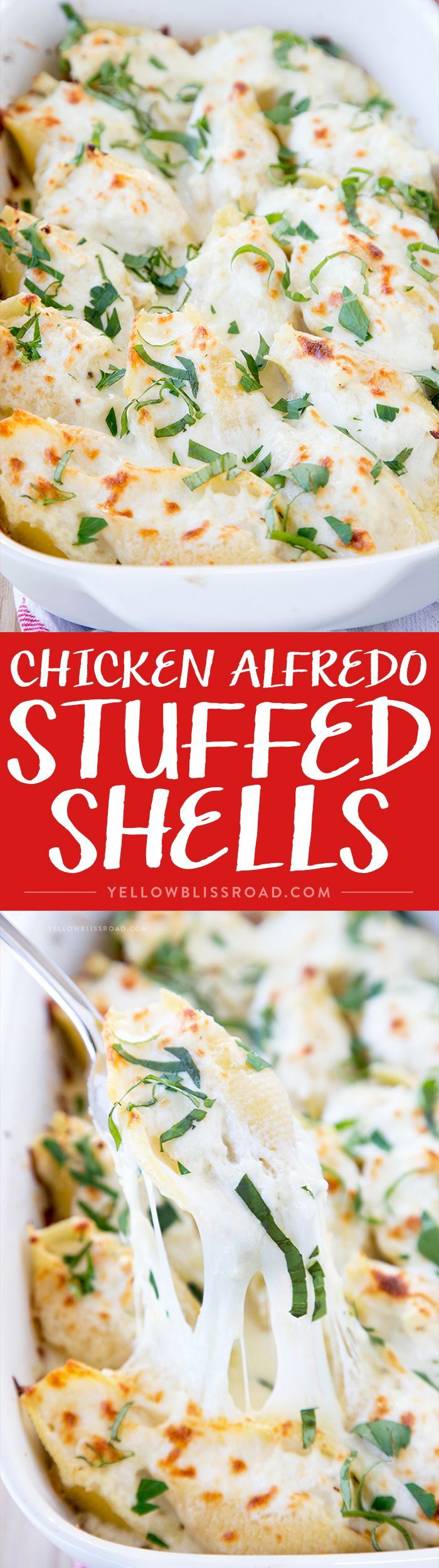 Chicken Alfredo Stuffed Shells - Creamy and rich pasta dish with a homemade simple Alfredo sauce, chicken Italian cheeses and ricotta.