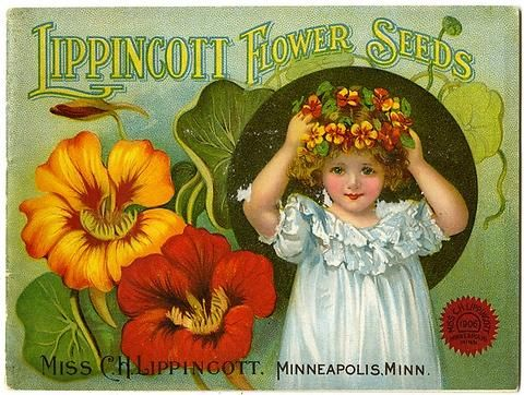 "A sweet young girl wears a ""flower crown"" of nasturtium on the cover of the  1906 Carrie Lippincott catalog. Carrie Lippincott, the self-proclaimed ""pioneer seedswoman"" and ""first woman in the flower seed industry"" established her mail-order flower seed business in Minneapolis in 1891. Sending out smaller 5 inch by 7 inch catalogs with colorful covers her business was aimed at women customers."