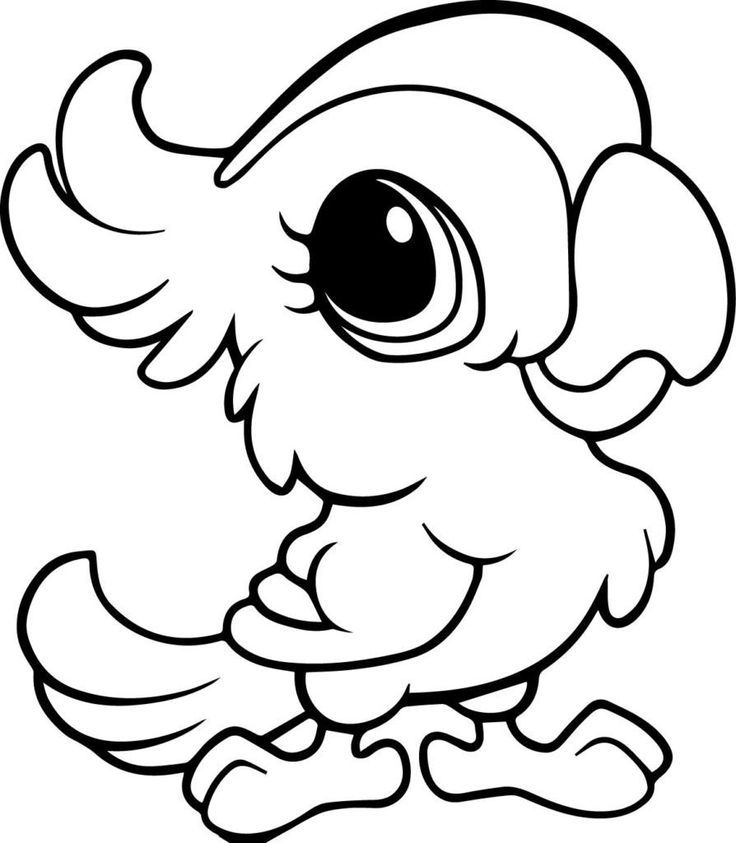 Cute Baby Parrot Coloring Page Animal Coloring Pages Baby Animal Drawings Animal Coloring Books
