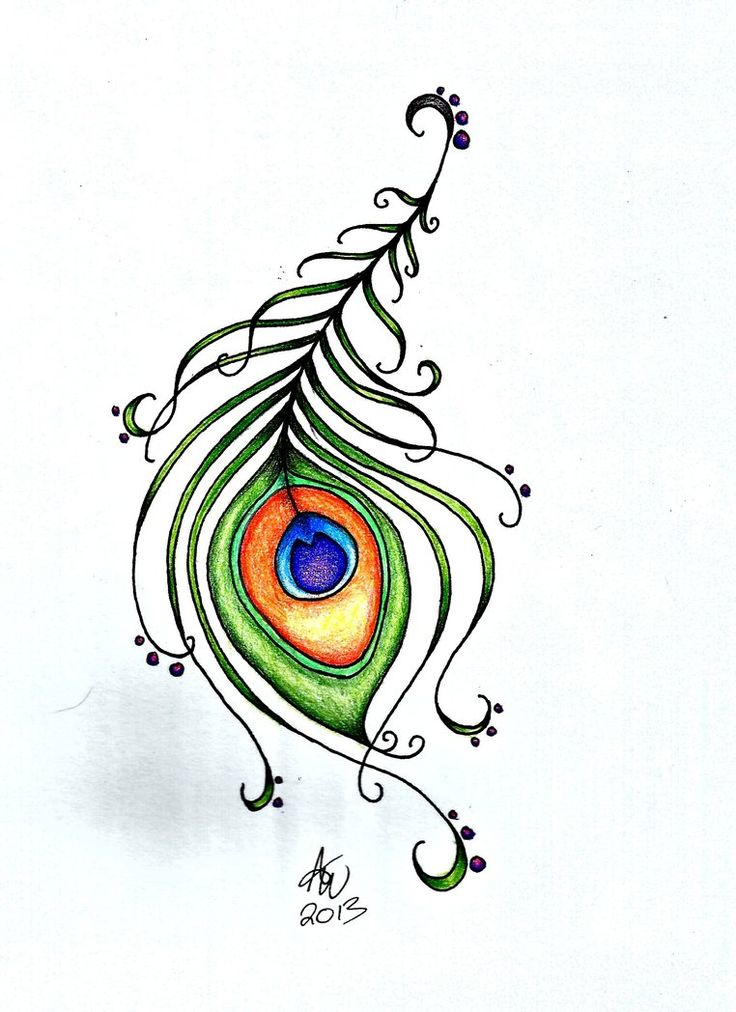 20 best peacock cute images on pinterest. Black Bedroom Furniture Sets. Home Design Ideas