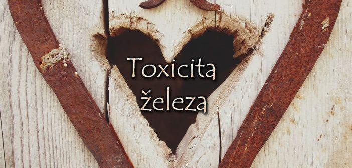 Toxicita železa. Opět docela zajímavý článek o tom jak nám železo škodí….