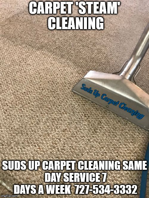 29 Best Suds Up Carpet Cleaning Images On Pinterest