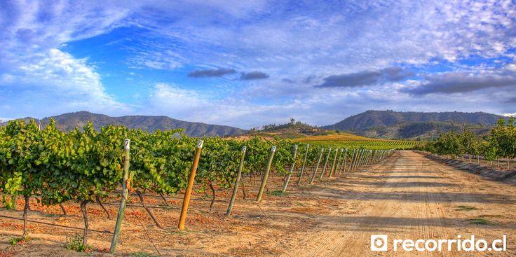 Las viñas más bonitas cerca de Santiago
