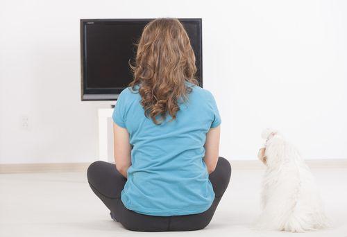 Está provado: até os cães preferem as TVs de tela plana!