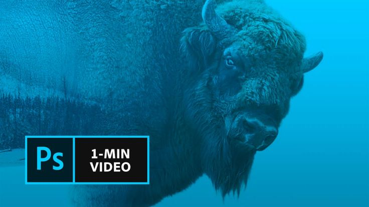 This 60-second video will show you how to use Photoshop to make a double exposure.