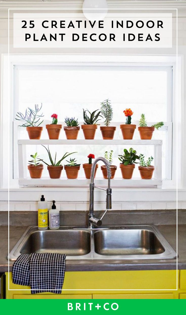 Get indoor plant decor inspo from these creative ideas.