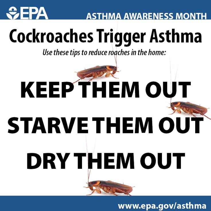 13 best Asthma Awareness images on Pinterest Asthma, Breathe and - asthma action plan