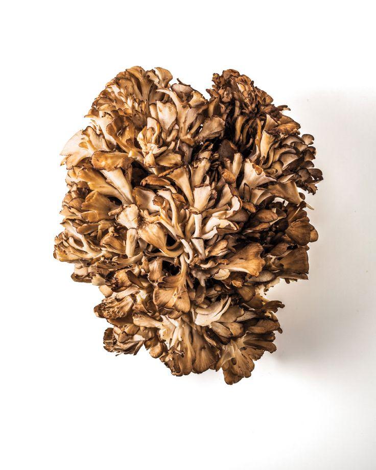 6 Ways to Cook Maitake Mushrooms