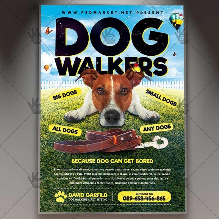 Dog Walkers - Premium Flyer PSD Template. #care #cat #dog #leaflet #lost #pamphlet #paws #pet #professional #service #services #sitting #walker #walkers #walking  DOWNLOAD PSD TEMPLATE HERE: https://www.psdmarket.net/shop/dog-walkers-premium-flyer-psd-template/  MORE FREE AND PREMIUM PSD TEMPLATES: https://www.psdmarket.net/shop/