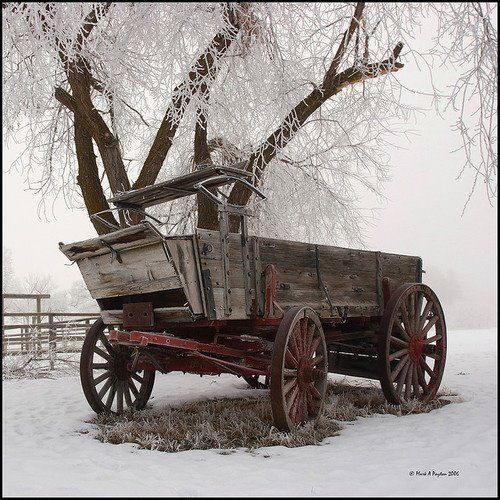 34 best images about wagons on pinterest old wagons for Things to do with old wagon wheels