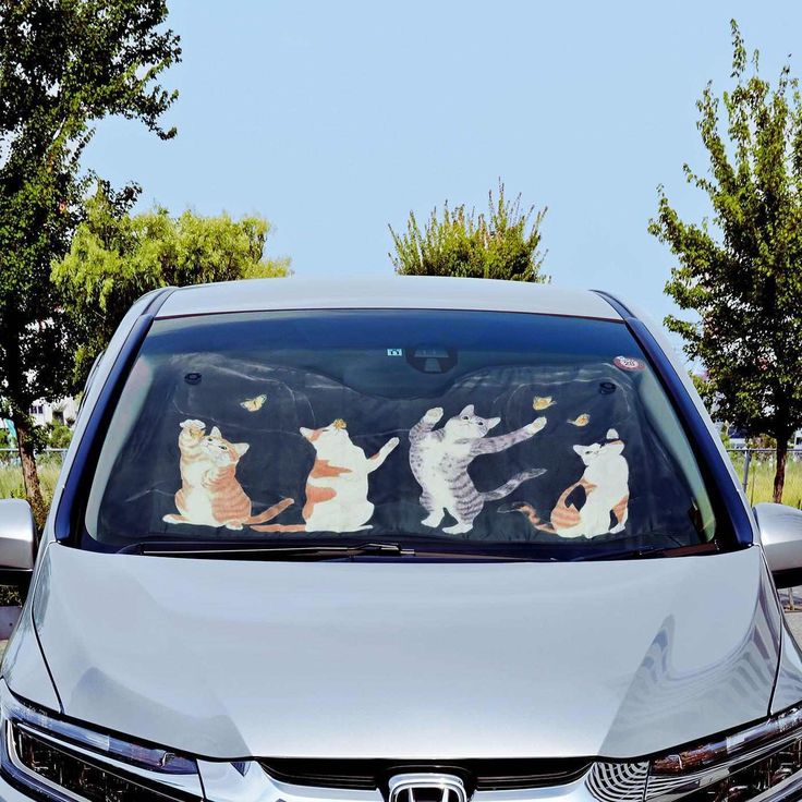 1088 Best Images About The Crazy Cat Lady