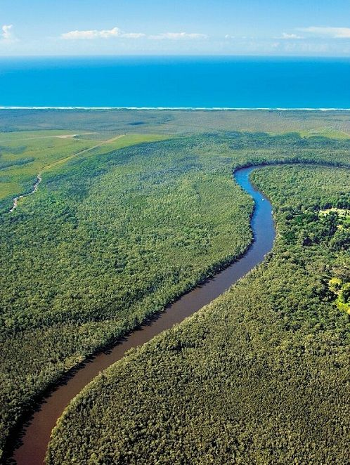 The best way to experience the Noosa Everglades - canoeing down the Noosa River