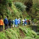 levadas walks madeira, find cheap hotels and holiday cottages, nature and rural house & discounts. Compare hotel deals & more