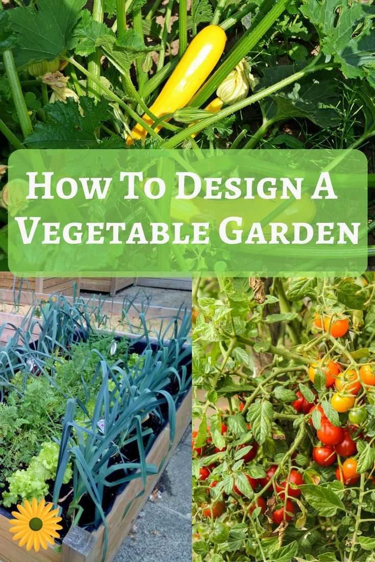 Vegetable garden art - Backyard Vegetable Garden Design