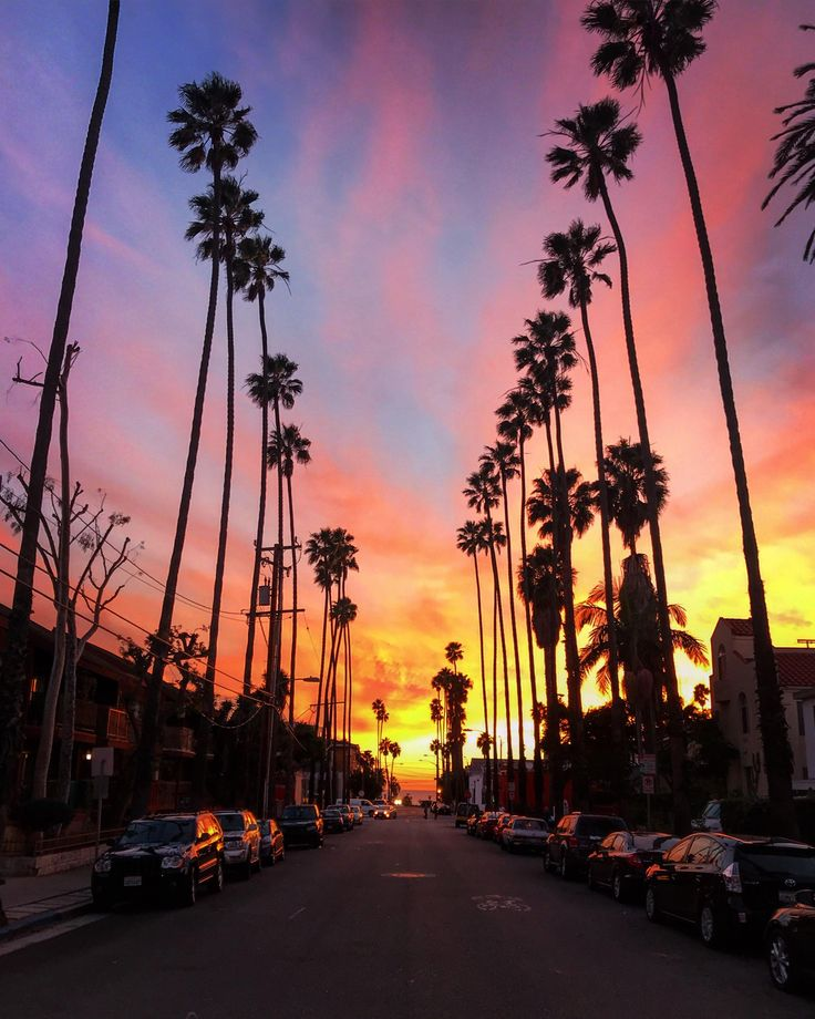 Santa Monica CA 750x1334 OC | Sky photos, Photo