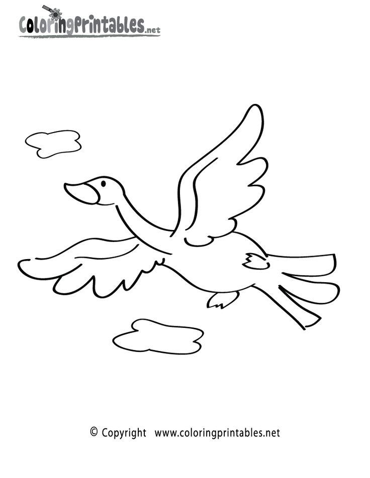 Bird Coloring Page Printable