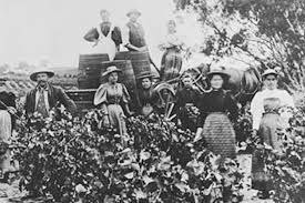 Image result for early settlers australia