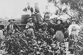 Image result for early settlers australia