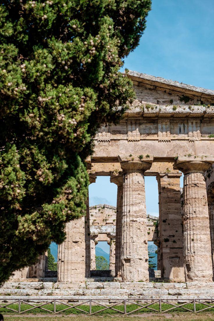 #Archaeological Site of #Paestum. #history #dorictemples #travel #italy #templeofhera #templeofneptune #templeofathena #romanamphitheater #history #romanamphitheater #museums #greektemples #dorictemples #temples #magnagrecia #southofitaly #visititaly #visitcilento #visitpaestum #cilento #sea #sun #picoftheday #temples #archaelogicalsite #paestumarchaeologicalsite #riunsofpaestum #doric #roman