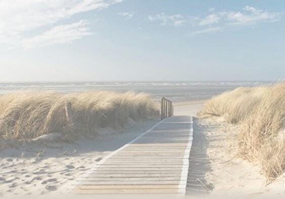 Duinen en pad naar de zee.  Dank aan Monique Staal (via Pinterest)