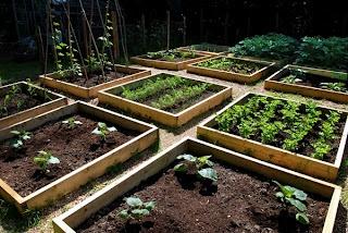 Moje nowe życie na wsi: Ogrodowe inspiracje - warzywnik