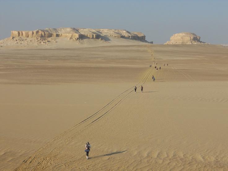 Sahara Race: 250km footrace #greatwalker
