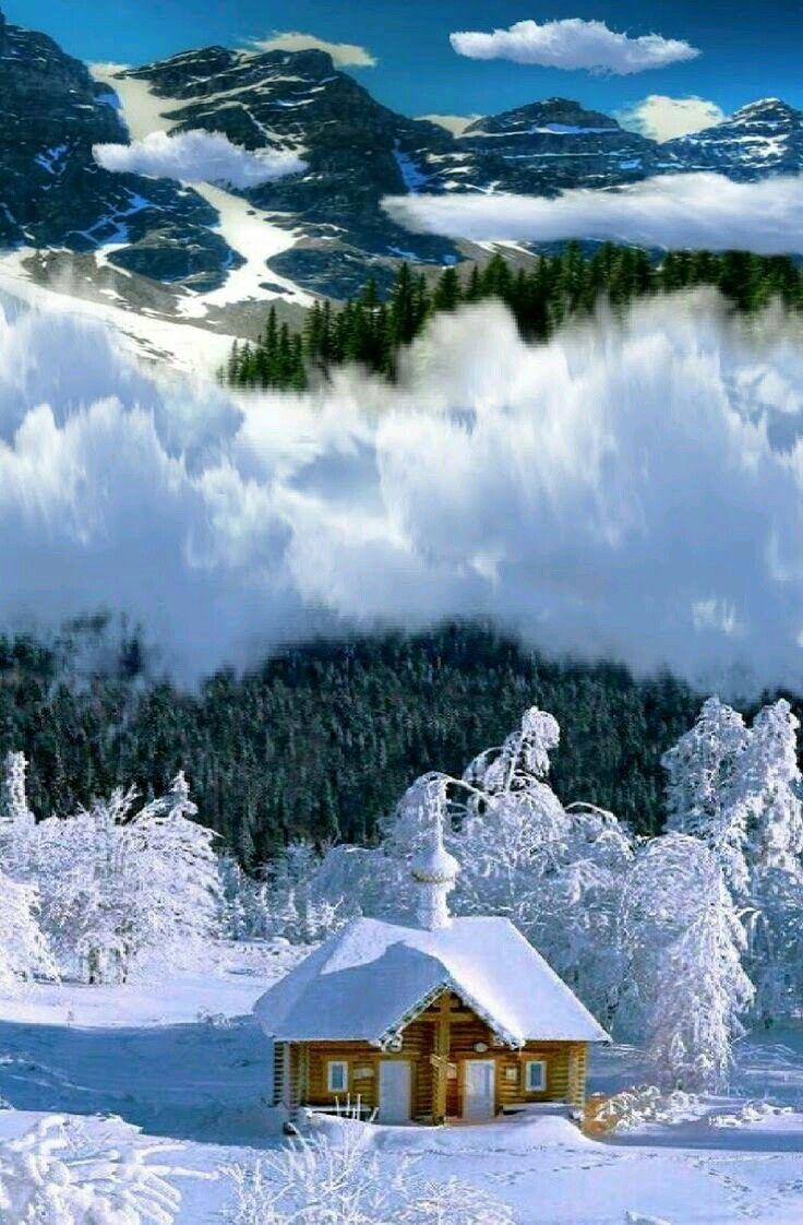 некоторые моменты картинки для телефона красивые природа зима хозяин