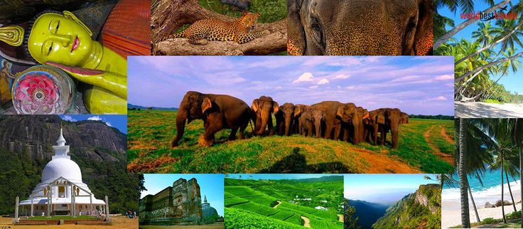 Holiday & Tour Package to Sri Lanka Get Package & Prices Now. Flight, Stay, Sightseeing, Travel Included. Book Your Dream Holiday With Worldbesttravel.. End-to-end Customization • Plentiful Choices • Live Chat With Experts • Personalised Itinerary Destinations: Colombo, Kandy, Yala, Nuwara Eliya  Make An Enquiry on :- +44-0208-133-0907   http://worldbesttravels.com/
