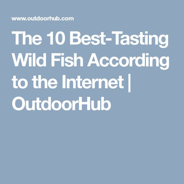 The 10 Best-Tasting Wild Fish According to the Internet ...