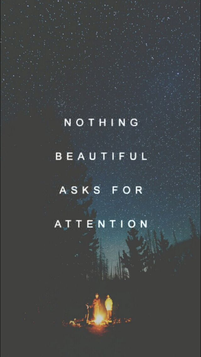 Nothing beautiful asks for attention - quotes, inspiring
