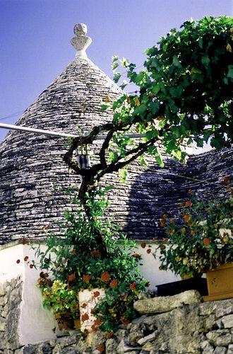 Alberobello Trulli, Puglia, Italy  ~ A trullo (plural, trulli) is a traditional Apulian dry stone hut with a conical roof. Their style of construction is specific to the Itria Valley, in the Murge area of the Italian region of Apulia. Trulli were generally constructed as temporary field shelters and storehouses or as permanent dwellings by small proprietors or agricultural laborers. Their golden age was the 19th century.via wikipedia