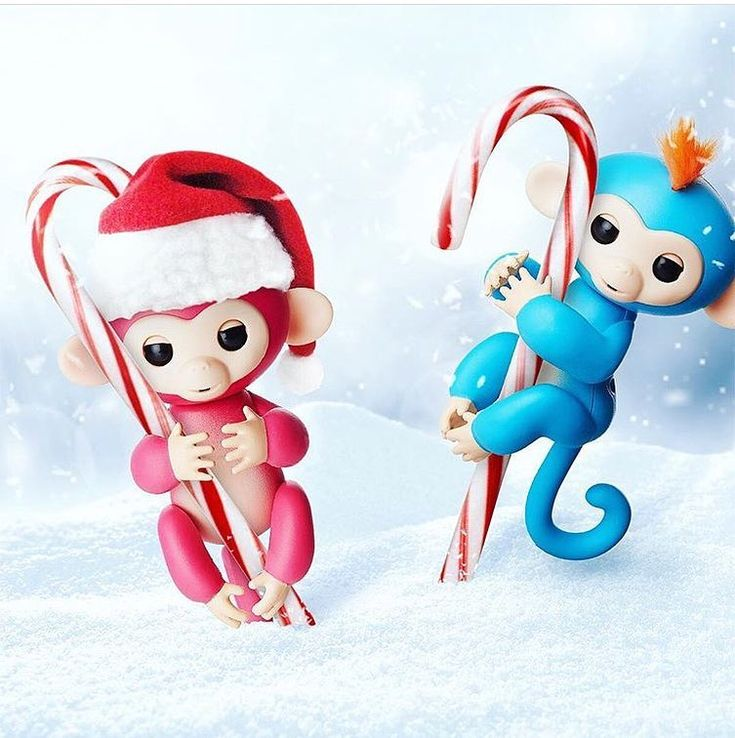 Fingerling Monkeys celebrated Christmas very well  Have you enjoyed the holidays? #fingerlings #monkey #fingerlingsmonkey #kidstoy #kids #kidtoy #toy #toysRus #funtoy #gift #holiday #child #children #christmas #christmasgift #forkids #kidsloveit #funny #gadget #cool #baby #babytoy #babytoys