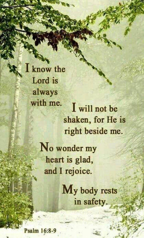 Psalms 16:8-9