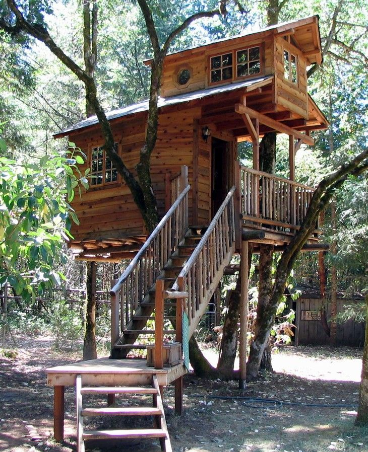 Отель Out'n'About Treesort в США - дом на дереве