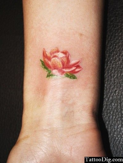 Water Lily Tattoos | Small Red Lotus Water Lily Flower Wrist Tattoo - Pictures Photos Pics ...