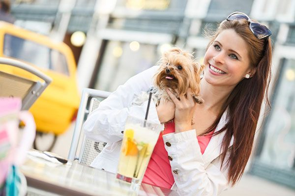 Dog restaurants: Take your pooch out to eat