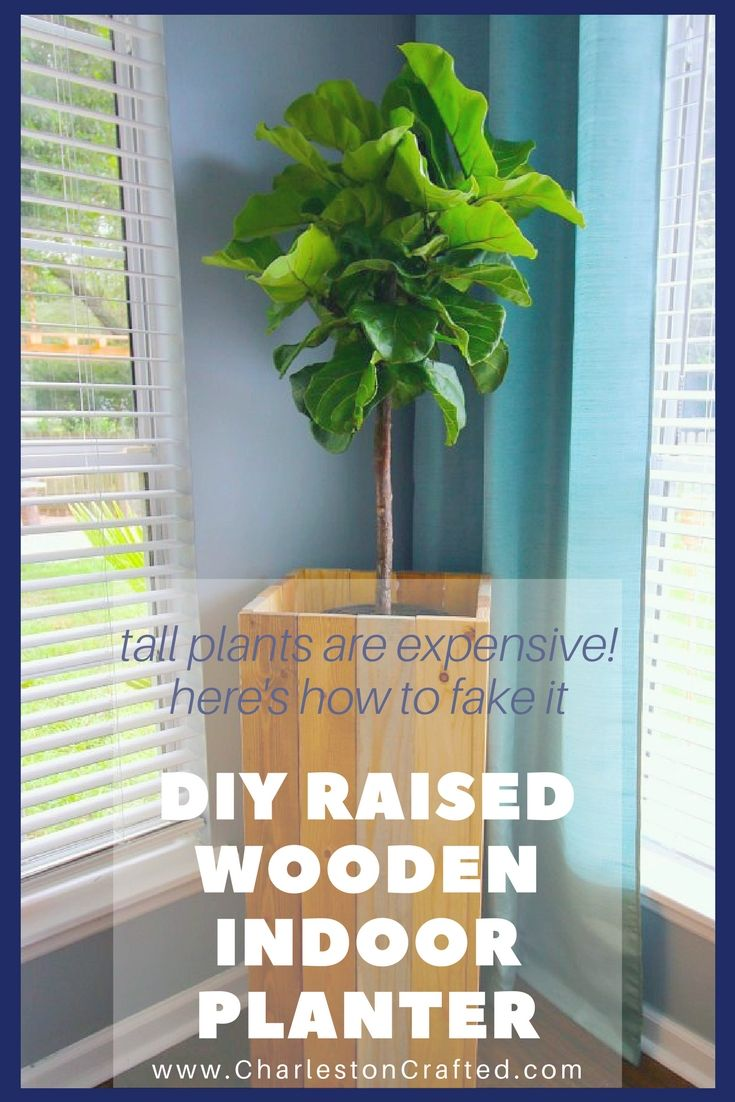 Tall plants are SO EXPENSIVE! I mean, a 6 foot fiddle leaf fig is $300! It's easy to fake it and make a smaller plant look tall with this DIY raised wooden indoor planter. Spoiler alert - the whole thing is held together with wood glue! You gotta check out the simple tutorial!