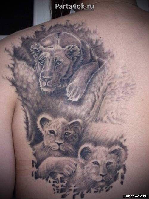 Лев и львица черно белое фото 5