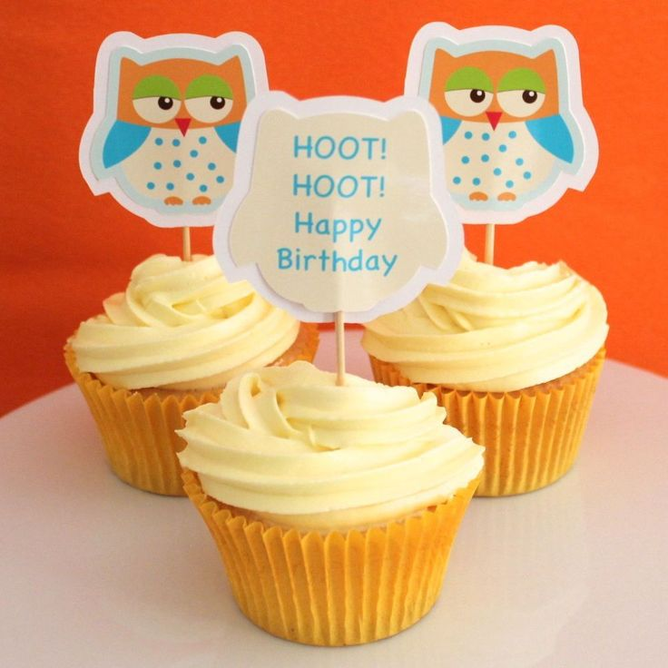 Happy Owl Cupcake Toppers - 6 Pack